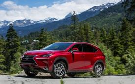 Lexus NX đời mới lộ mặt lần đầu: Có điểm giống RAV4, cạnh tranh GLC