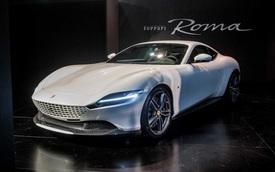 Ferrari quyết không làm siêu xe 'xăng pha nhớt' với 2 mẫu này