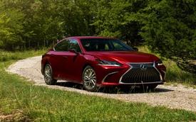 Ra mắt chưa lâu tại Việt Nam, Lexus ES chuẩn bị có phiên bản nâng cấp giữa vòng đời