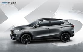 Ra mắt X5 nhưng không phải BMW: Đúng là có X5 this, X5 that