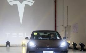 Tương lai của Tesla ở Trung Quốc và tham vọng thống trị toàn cầu của Elon Musk đang phụ thuộc vào tỷ phú Trung Quốc này