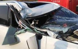 Xe điện Trung Quốc bị đâm gãy trục chữ A nhưng không bung túi khí