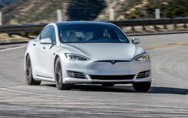Elon Musk không phải là nguyên nhân người Mỹ mua xe Tesla, thậm chí ngược lại