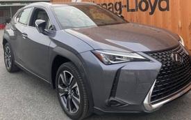 Lộ Lexus UX đăng ký bản quyền tại Việt Nam: Crossover hạng sang đấu Mercedes GLA, BMW X1 và Audi Q3