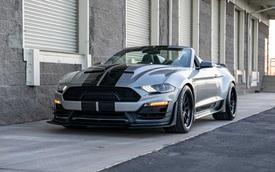 'Siêu rắn' Shelby Super Snake Speedster chào sân: Chủ xe Ford Mustang GT muốn độ lên thì cần bỏ gần 2 tỷ đồng