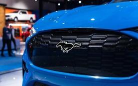 Đây là mẫu xe Ford duy nhất có logo ngựa chạy phát sáng