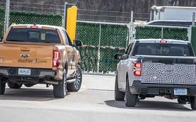 Hình ảnh tiết lộ kích thước tí hon của Ford Maverick so với Ranger
