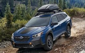 Ra mắt Subaru Outback Wilderness: Chuẩn SUV dã ngoại, tham vọng đấu Mercedes-Benz GLC