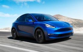 Elon Musk lại 'nổ': Tesla Model Y sẽ thành xe bán chạy nhất thế giới trong 2 năm nữa
