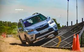 Subaru Forester 'gặm nhấm' thị phần của Honda CR-V bằng cách này