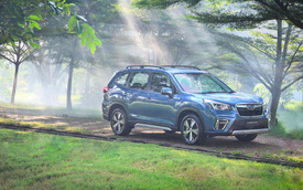 Subaru Forester thêm trang bị tại Việt Nam, giá từ 969 triệu đồng, tăng sức đấu Honda CR-V