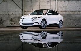 'Black Edition' xưa rồi, Ford mới đây đã ra mắt 'White Edition' cho cả 2 phiên bản Mustang