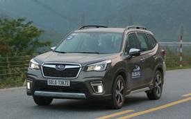Subaru Forester giảm giá tối đa tới 229 triệu đồng - Sức ép mới cho Honda CR-V, Mazda CX-5