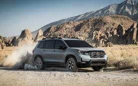 Ra mắt Honda Passport 2022 - SUV cỡ trung cạnh tranh Hyundai Santa Fe và Kia Sorento