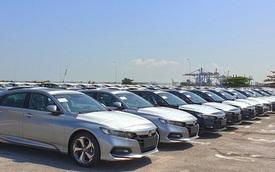 Nhập khẩu ô tô giảm sâu tháng đầu năm 2021