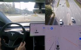 Để xe Tesla tự rẽ trái sang đường, tài xế suýt gặp tai nạn kinh hoàng