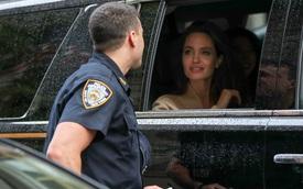 """Angelina Jolie bị cảnh sát """"ới"""", dân tình không cần biết lý do mà chỉ ngẩn ngơ ngắm gương mặt đẹp như tranh lấp ló trong xe"""