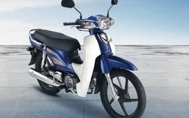 Mẫu xe máy giữ hồn Honda Dream giá 27 triệu đồng, bình xăng 4,3 lít, siêu tiết kiệm xăng