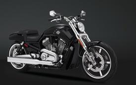 """Harley-Davidson V-Rod Muscle – """"Đẹp trai nhưng lạnh lùng"""""""