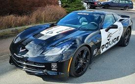 """Corvette Stingray """"phiên bản"""" Transformers có giá 120.000 USD"""