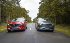 Bộ đôi SUV Mazda CX-5 và Mazda CX-8 về đích ấn tượng