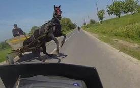 Nữ biker nghiêng xe tránh vó ngựa ở tốc độ cao