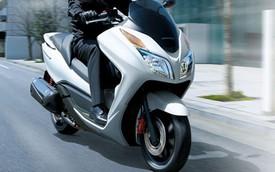 Sau Thái Lan, Honda Forza 300 đến Indonesia
