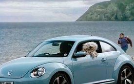 Volkswagen dùng 36 chú chó để quảng cáo xe