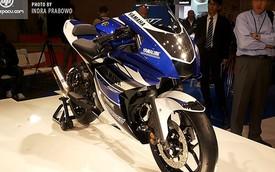 Yamaha R25 chắc chắn sẽ sớm đến thị trường Đông Nam Á