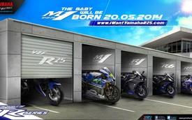 Yamaha R25 phiên bản sản xuất ra mắt Đông Nam Á vào ngày 20/5
