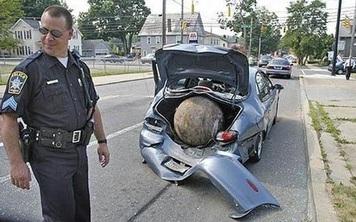 """Tìm chỗ giải quyết """"nỗi buồn"""", đến khi quay lại xe, cảnh tượng khủng khiếp trước mắt khiến người đàn ông lập tức báo cảnh sát"""