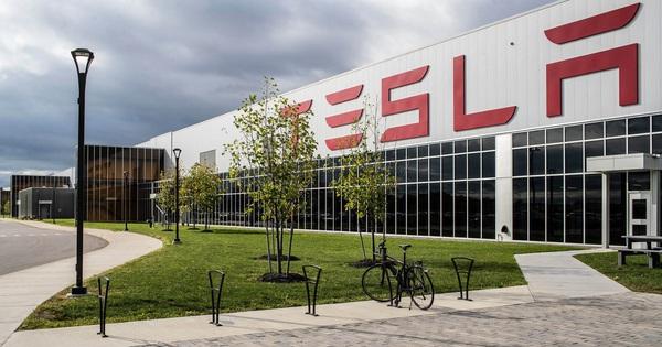 """Nghịch lý Tesla: Sản xuất xe """"xanh"""" nhưng lại chặt rừng xây nhà máy"""